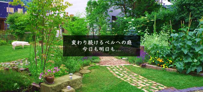 成長したペルへの庭